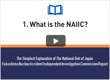 1. What is the NAIIC?