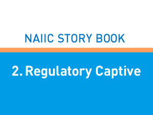 2. Regulatory Captive